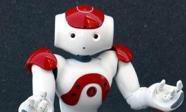 Nao-the-robot-2010-006